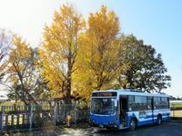 五丁(ごちょう) - さつませんだいバスみち散歩