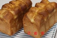 食パンとクグロフ - パン・お菓子教室 「こ む ぎ」