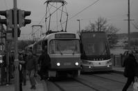 A moment in Prague #12 - S w a m p y D o g - my laidback life