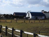 お馬さん - 小さなお庭のある家(パート2)