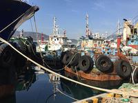 〈釜山旅行〉漁港とアートの出会い「カンカンイの道」を歩く - 韓国アート散歩