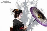 京都をさがしに - *花音の調べ*