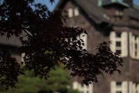 東京の紅part2旧古河庭園2018 - 「せ」の写真集 刹那の光