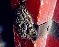 中国の旅ーーポタラ宮(四) - 旅行ー一番好きなこと