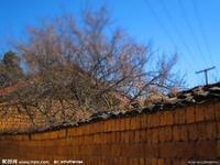 中国の旅ーー麗江古城(三) - 旅行ー一番好きなこと