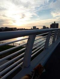 夕焼け - 柴犬 ひろゆきと さもない毎日&週末自宅カフェ里音 (りをん) 一之江・笑い療法士のいるカフェ