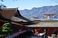 宮島☆晩秋の厳島神社 - できる限り心をこめて・・Ⅲ