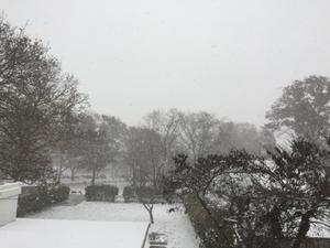 雪???? - KM