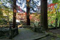 洞慶院の秋 - やきつべふぉと