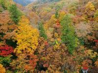 裏磐梯中津川渓谷の紅葉2 - 光の音色を聞きながら Ⅳ