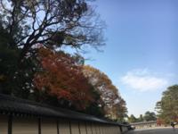 京都御苑の紅葉と梨の木神社 - 京都西陣 小さな暮らし