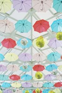 umbrella - photomo
