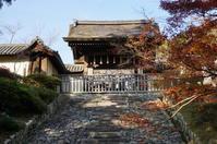 京都紅葉巡り2018(毘沙門堂~大覚寺~知恩院) - マルオのphoto散歩