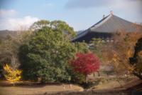 Autumn leaves 2 - TAKE IT EASY