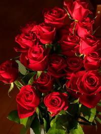31回目の結婚記念日 - Baking Daily@TM5