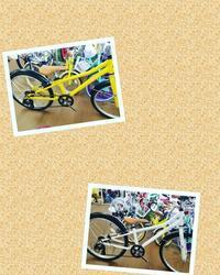おすすめなジュニアバイク - 滝川自転車店