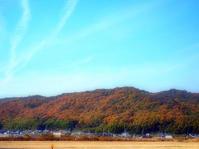 吉備津彦神社から龍王山へ - つれづれ日記