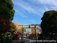 「神社とお花」12月1日 - こころ絵日記 vol.1