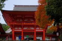 近江神宮 紅葉 - nyan5 blog