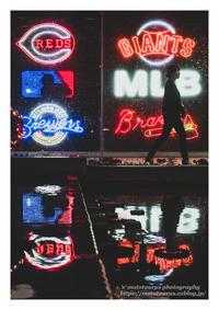 移ろい - ♉ mototaurus photography