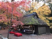 茶店 - 花咲く俳句日誌