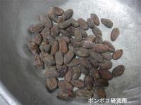 カカオ豆からのチョコレート作り - ポンポコ研究所