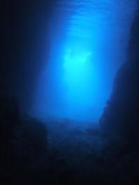 ダイビング☆ - 沖縄ダイビング&フィッシング DSA ブログ