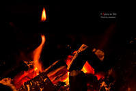 charcoal fire - + Spice to life