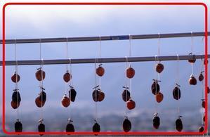 早朝周辺ウオーキングシリーズ:干し柿 - えいじのフォト徒然日記