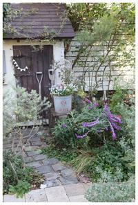 庭のある幸せ - natu     * 素敵なナチュラルガーデンから~*     福岡で庭造り、外構工事(エクステリア)をしてます
