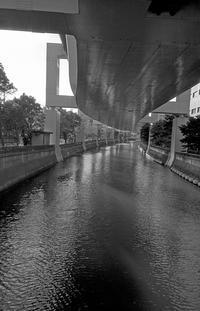 河畔にて(その2) - そぞろ歩きの記憶