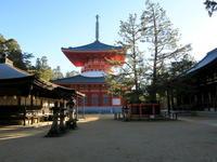 高野山と紅葉の奈良3社寺を見にいく旅高野山・談山神社・長谷寺・室生寺 - ニッキーののんびり気まま暮らし