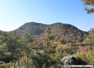 No497岡山の里山観音寺山を歩く -