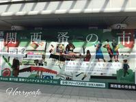 関西蚤の市へ… @兵庫仁川・阪神競馬場 - 趣味とお出かけの日記
