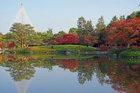 昭和記念公園紅葉6 - 生きる。撮る。