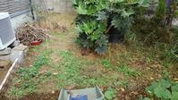 裏庭草取り - うちの庭の備忘録 green's garden