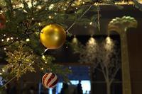 Happy Holidays #3 - miyabine's フォト日記2~身の周りのきれい・可愛い・面白い~