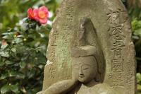 今日の安行・興禅寺 - みるはな写真くらぶ