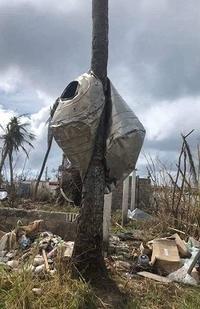避難生活1ヵ月/貰うべきか否か - 眠れる島の小さな住人達