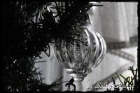 christmas tree 2018🎄 - Salt&Orange時々Pepper