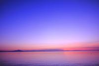 アーモンド - Pastel color