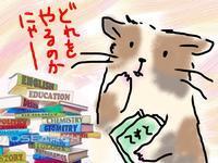 2週連続の学校別模試の第1弾だったハナシ - もるもってぃ家の中学受験ぶろぐin東海地方