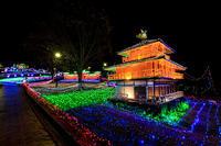 光のページェント~TWINKLE JOYO 2018~ - 花景色-K.W.C. PhotoBlog