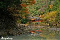紅葉と水鏡~大井川鐡道~ - 蒸気をおいかけて・・・少年のように