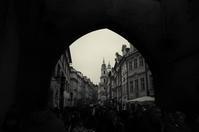 A moment in Prague #15 - S w a m p y D o g - my laidback life