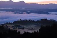 朝霧(山本山) - くろちゃんの写真