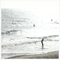 海  。°* - かめらと一緒*