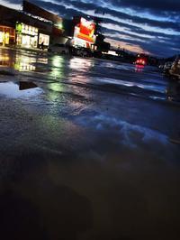 12月3日今日の写真 - ainosatoブログ02
