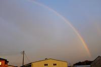 虹 - 空を見上げて