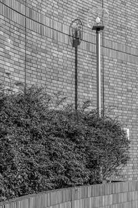 街燈 - TW Photoblog